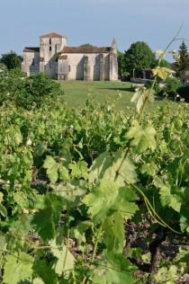 Saint-Fort-sur-le-Né