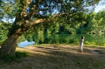 Bourg-Charente