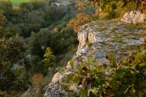 111119-08-chateauneuf