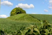 Camp néolithique de Challignac